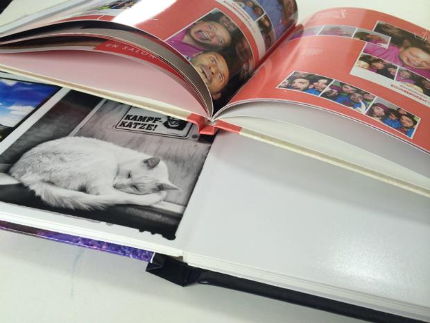 Diferencias álbum Hofmann libro Hofmann