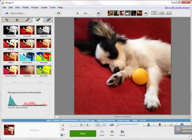 Editar fotos Picasa
