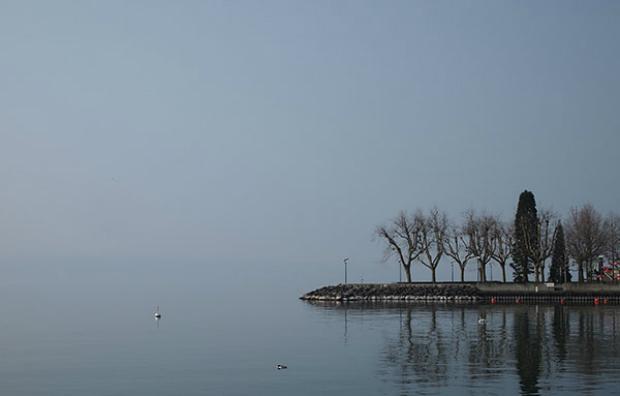 Reglas de la composición: horizonte