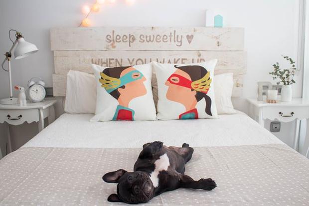 decoración-mascotas-dormitorio-2