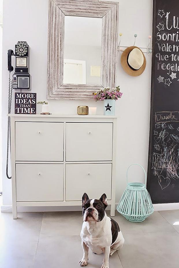 decoración-mascotas-1